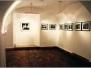 Písek - muzeum 2000